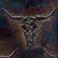Skulls leather